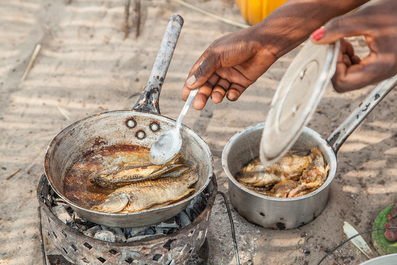 Woman prepares fish in the Barotse floodplain of Zambia. Photo by Clayton Smith.