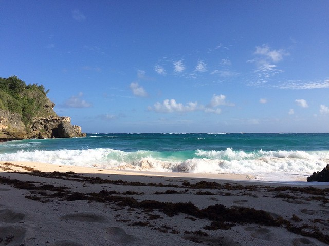 月, 2015-12-07 13:54 - Foul Bay北端ビーチ