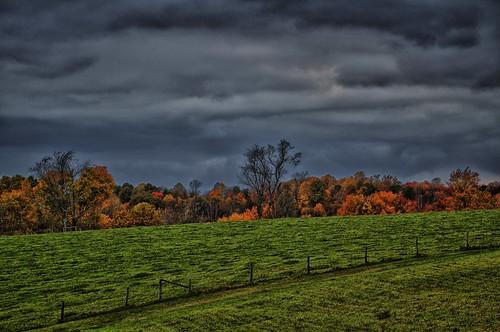 ohio landscape fallfoliage