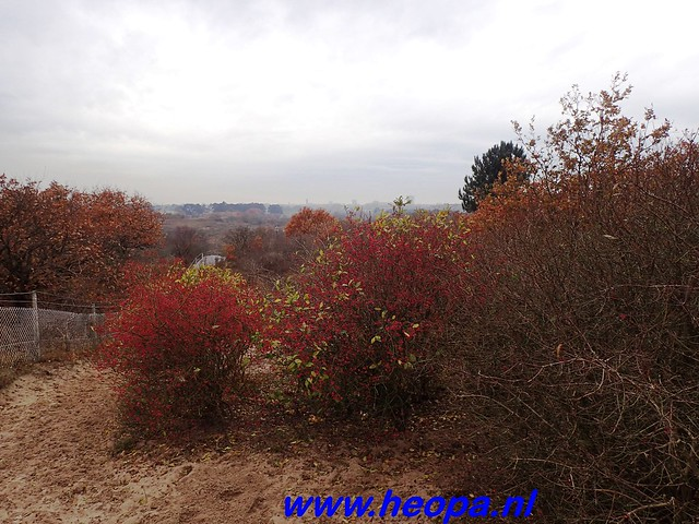 2016-11-23            Bloemendaal       26 Km   (87)