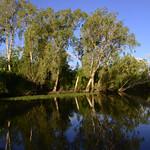 02 Viajefilos en Australia, Kakadu NP 085