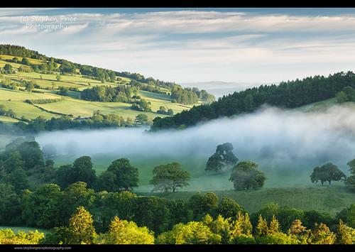 uk morning summer mist misty wales calm breconbeacons valley welsh treesinmist