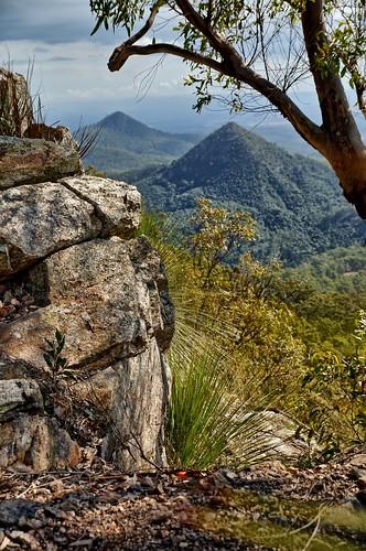 hiking australia bushwalking queensland flinders flinderspeak