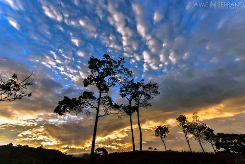 color rural atardecer tramonto natural paisaje vista siluetas sanroque piñas panoráma entorno mirmir lozumbe ecuadoramalavida lacabañadelcafé altopuyango jaimeserranoart