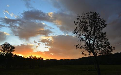 winter sunset silhouette sundown australia nsw bentley sunsetclouds northernrivers coastbanksia scrubbycreek backcreekvalley