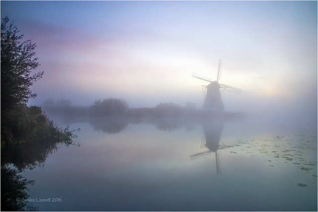 Dutch Pastels