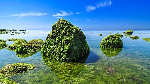 shore shoreline 1116mm 1116mmf28 tokina1116mmf28 tokina crescentbeach britishcolumbia beach water sea seascape ocean nikon d90 scene scenery scenicsnotjustlandscapes scape view vista