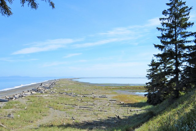 Dungeness Spit
