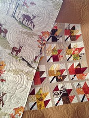 Modern Maple quilt with paint box fabric on back!
