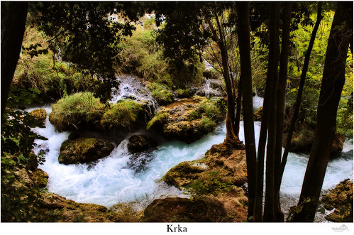 travel trees green nature water forest canon river landscape waterfall rocks croatia lonelyplanet nationalgeographic waterscape dalmatia krkanationalpark