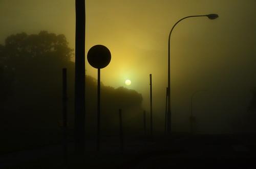 mist sunrise street yellow