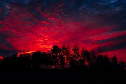 27oct16 366the2016edition 3662016 day301366 kodakektar100 ottawa vsco vscofilm05 clouds silhouette sunrise trees fujifilmx100s ©2016emrold|ericdelorme