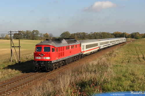 Obersdorf (Brandenburg) 23.10.08.