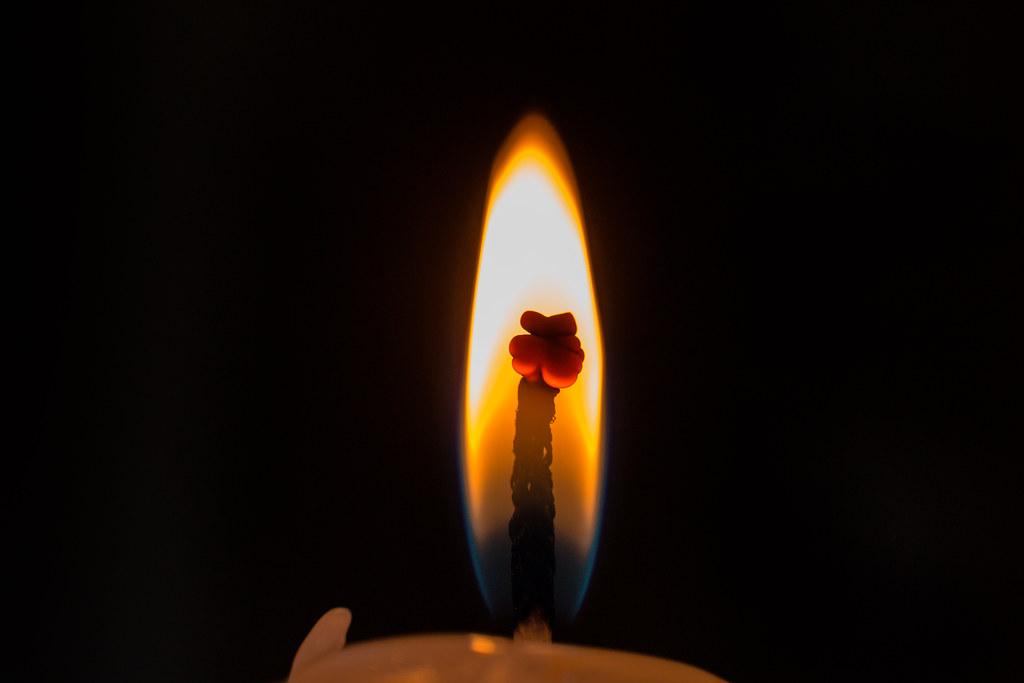 light the way- 331/365
