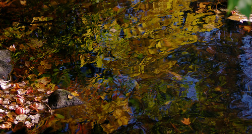 pentax k3 vbd smcpentaxda55300mmf458ed ct connecticut fall autumn newengland water reflection stonewaterlight abstract handheld 2015 pequonnockriver fall2015
