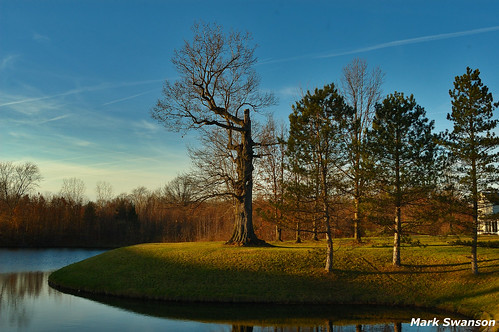 bridge blue autumn sunset ohio sky macro tree green fall nature pine landscape outdoors pond nikon d70 cleveland scenic sigma peaceful 24mm