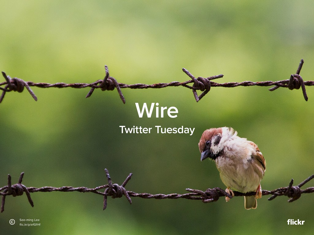 Twitter Tuesday: Wire