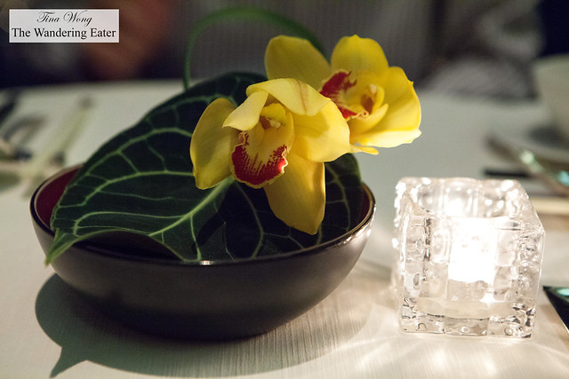 Beautiful orchids at the table