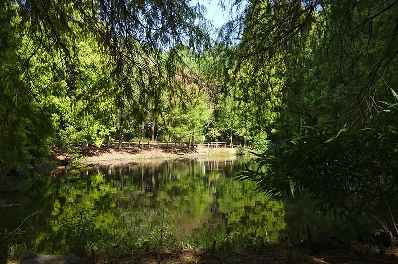 Jardin de Nagai