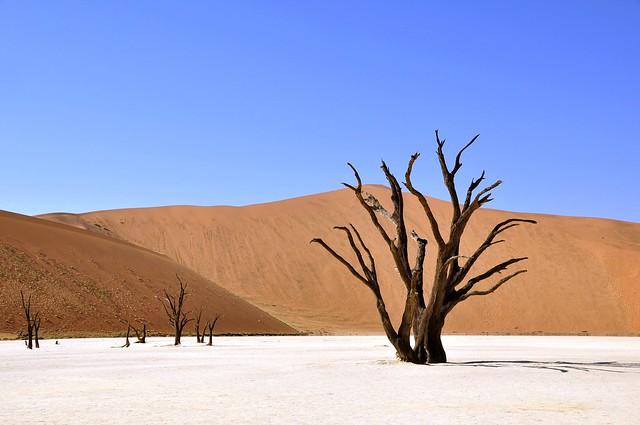 Deadvlei, Namib-Naukluft Park in Namibia