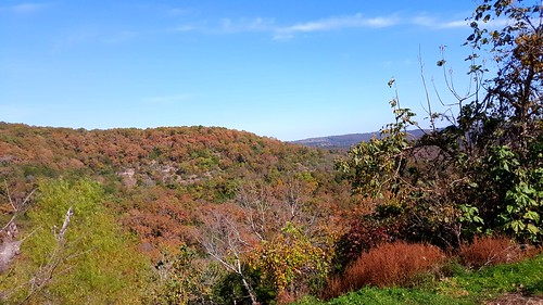 ozarks fall autumn woods scenery landscape missouri nofilters noediting samsunggalaxys6 sunny clear sunnyday clearsky bluesky fallcolors autumncolors southwestmissouri branson trees outdoor clearday salemplateau
