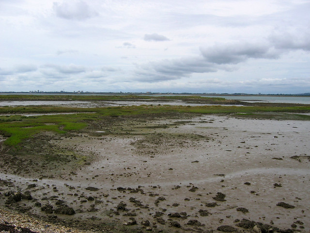 West Hayling Nature Reserve