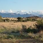 Út, 03/27/2012 - 17:30 - Afrika 2012