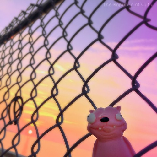 Pink Pet said this was the most beautiful fence and insisted on taking a photo with it. #pinkpet #therepublicofcute #lakeerie #lakewood #lakewoodpark #lakewoodohio #cleveland #cle #thisiscle #designertoy #resintoy #resin #smoothon #monsterkolor #arttoy #t | by Karly West