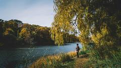 Autumn at Grenadier Pond