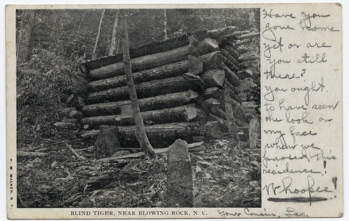 Blind Tiger, Near Blowing Rock, N.C. | by unclibraries_commons