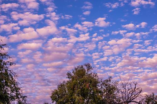ca california sunset nature sanjose sky outdoor evening clouds unitedstates us
