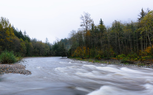 nature trees overcast longexposure autumn river canoneos5dmarkiii canonef1635mmf4lis washington pacificnorthwest