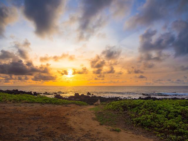 Southeast O'ahu Sunrise