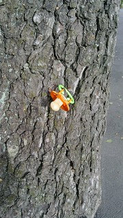 Pacifier hanging on a tree's bark