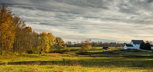 autumn barn cow us unitedstates farm indiana pasture zionsville