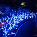 Tokyo Christmas VI