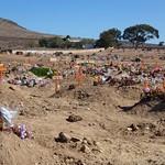Čt, 04/05/2012 - 09:59 - Afrika 2012