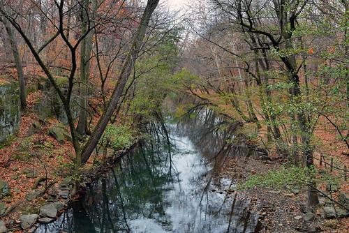 newyorkcity bronx rivers newyorkbotanicalgarden nycparks bronxriver