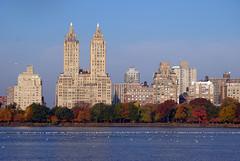 N. Y.
