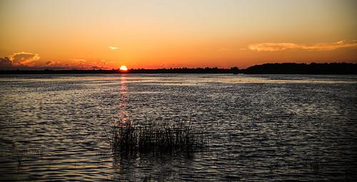 florida myakkariverstatepark uppermyakkalake sunset water lake wildlife grass reeds reflection sun colors wyojones np