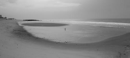 ocean blackandwhite seascape beach landscape seagull shore hss tamron1024mmlens