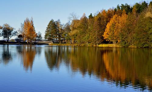 autumn landscape lake reflections fallcolors autumnleaves järvimaisema järvi nikon nature luonto pikkuvesijärvi pikkuvesku flickr finland suomi syksy october lokakuu maisema autumncolors d3200 nikond3200 europe