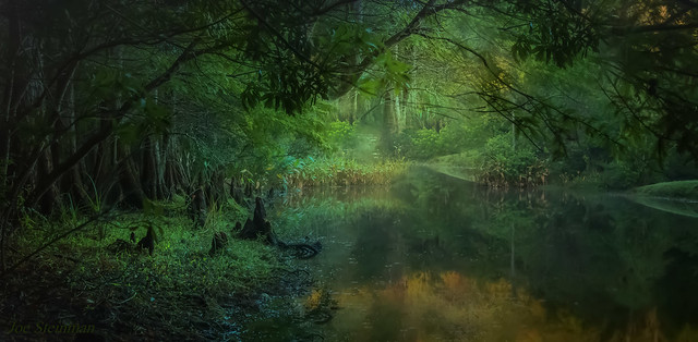 The River Winding thru the Emerald Forest