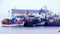 Combate Naval de Caldera