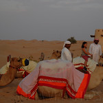Viajefilos en el desierto de Abu Dhabi 08