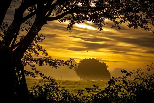 landscape sunrise dawn balloon hotairballoon outdoor clouds framed