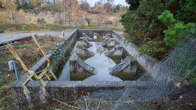 Bucklands Quarry Park Pit