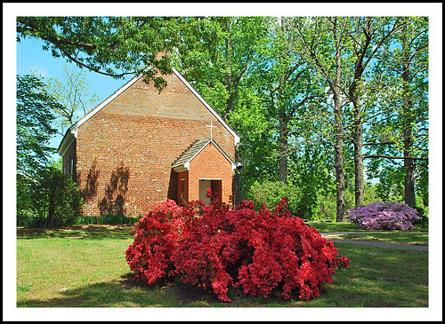 virginia toano hickoryneckchurch church azalea spring geotagged