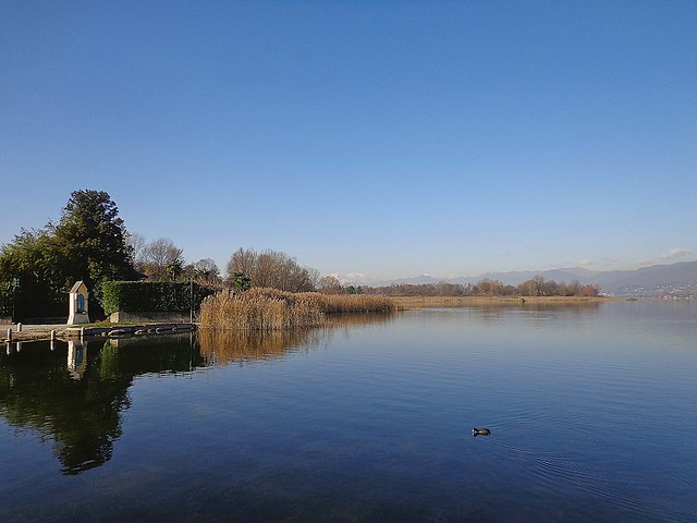 GALLIATE LOMBARDO - (Varese) -