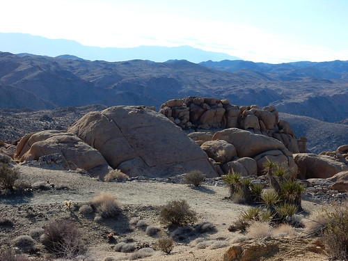 Joshua Tree NP - 6